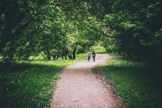 back view photo of two women walking down dirty road in middle of trees