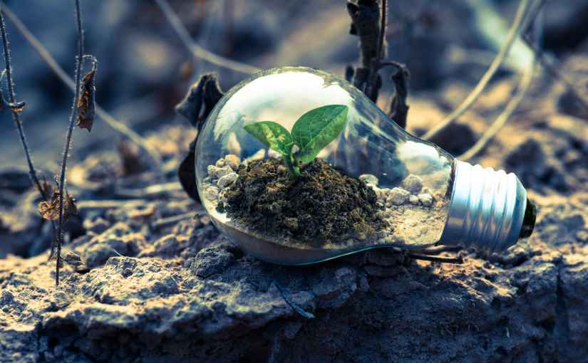 """""""Do Something Green Today"""" – The OutdoorCureOnline Guide to Staying Safe and StayingGreen"""